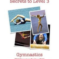 Level-3-Gymnastics-logo