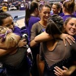 Gymnast support systems